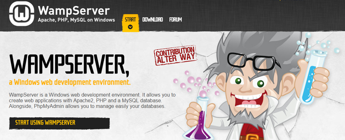 How to host your on website using wamp server